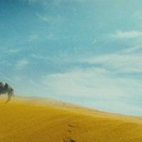 Đông tà Tây độc: Biết tìm đâu ký ức mùa sa mạc úa cát vàng bay?